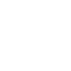 Digitales Wunderland